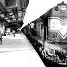 Train by Nikolay  Dimitrov