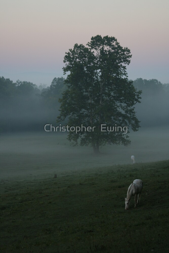 coming out of the mist by Christopher  Ewing