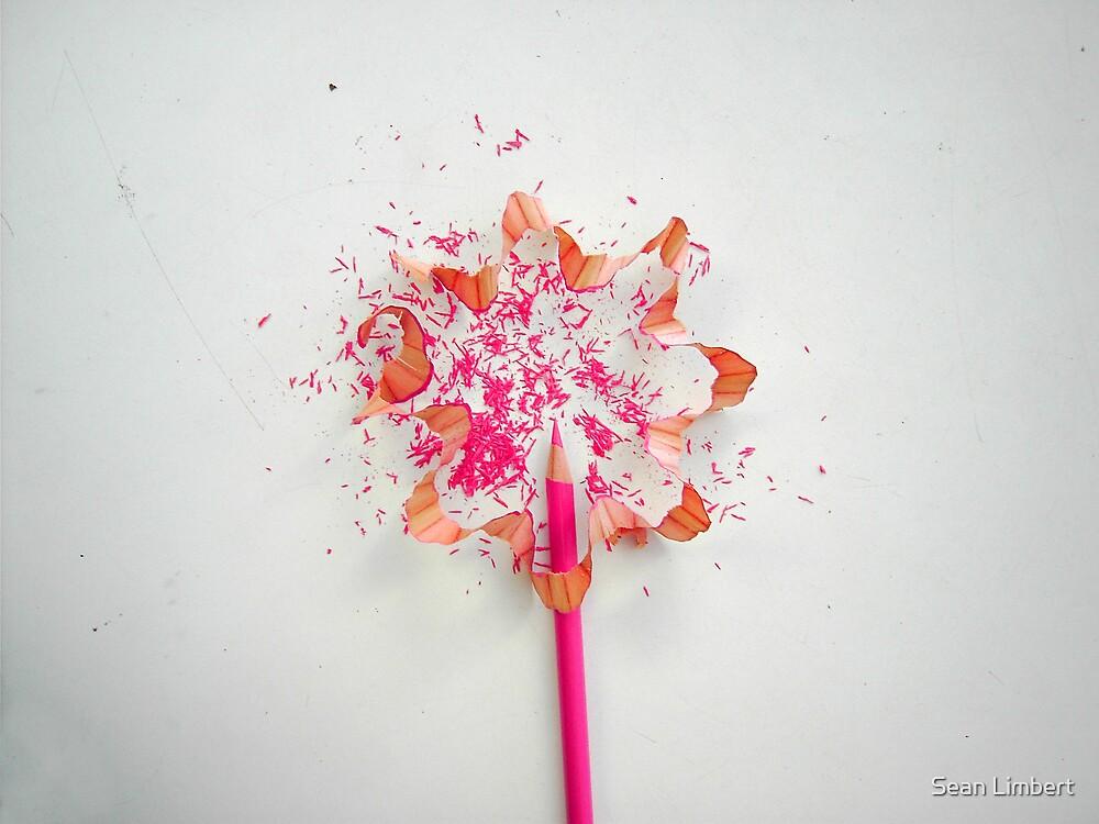 FLOWER by Sean Limbert