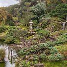 Hakone Gardens by James Watkins