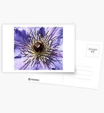 Clematis Postcards