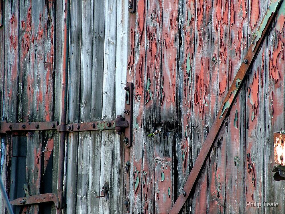 Flaking Doors by Philip Teale