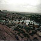 Desert Oasis by harrypratt