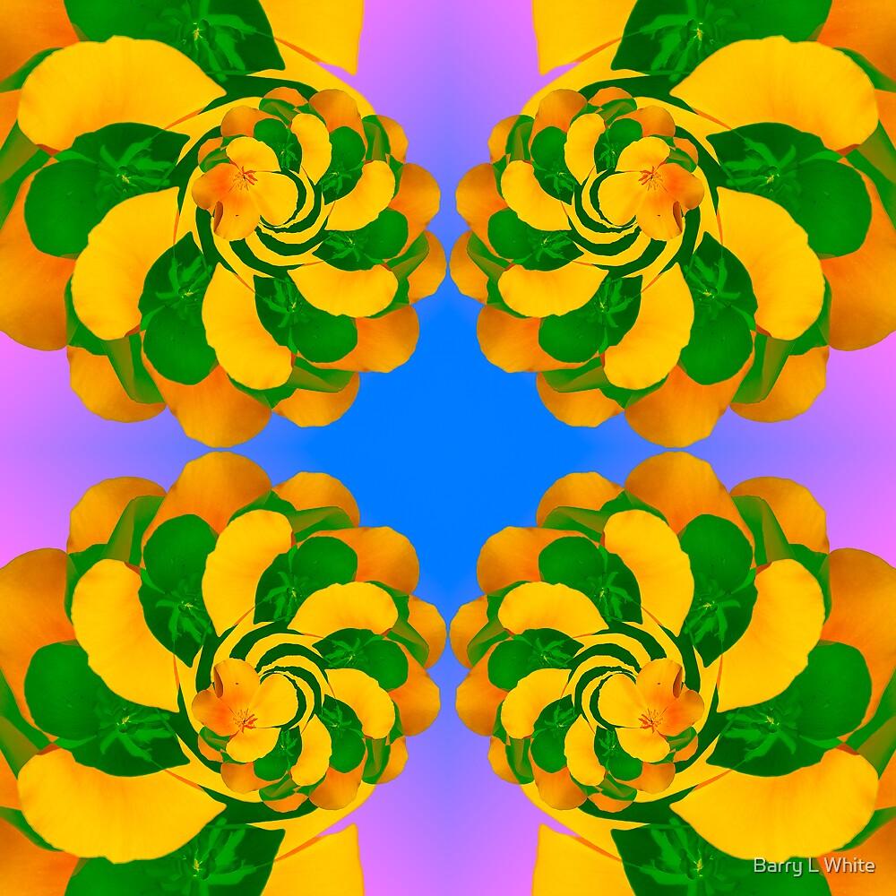 Flower Kaleidoscope  by Barry L White