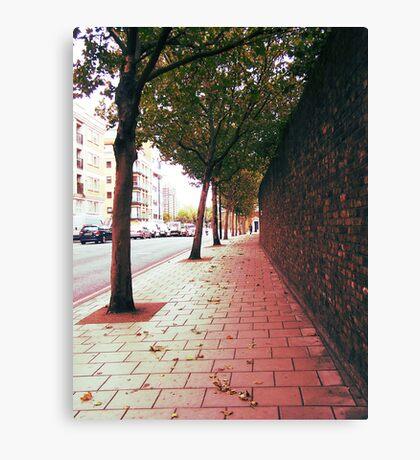 Autumn Alone Canvas Print