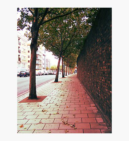 Autumn Alone Photographic Print
