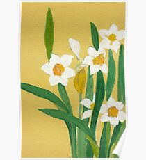 Daffodils from Amphai Poster