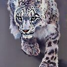 Snow Leopard by Norah Jones