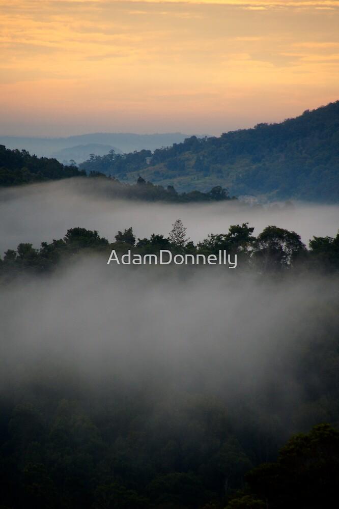 Wollumbin Valley by AdamDonnelly