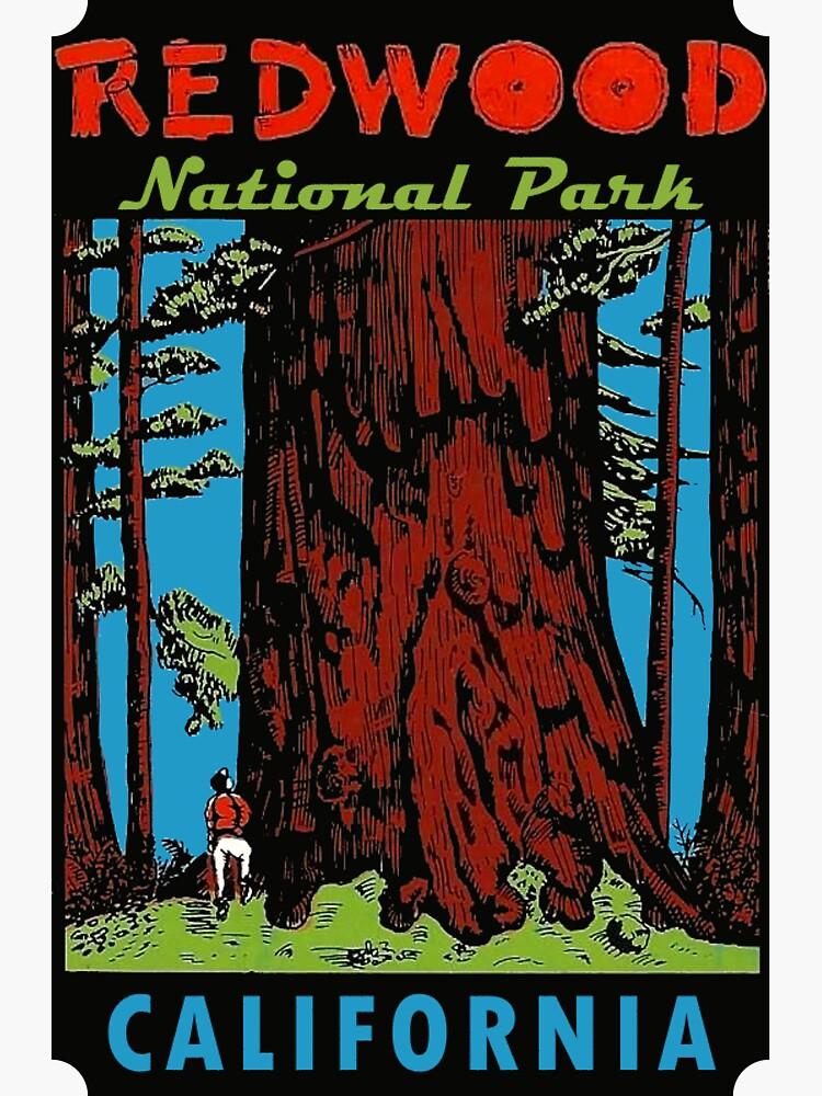 Redwood National Park California Vintage Travel Decal by hilda74