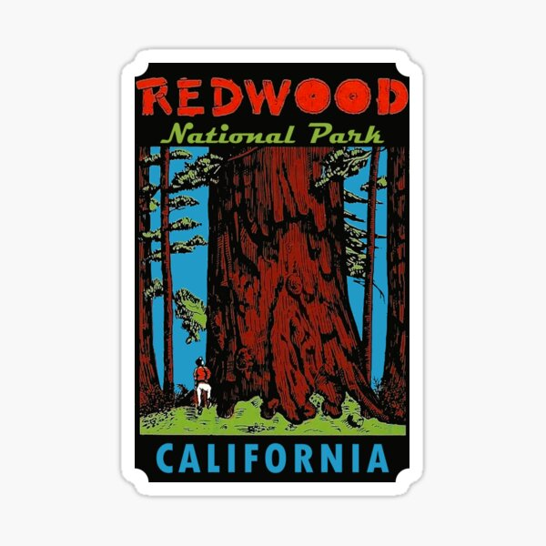 Redwood National Park California Vintage Travel Decal Sticker