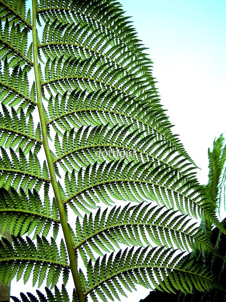 Large fern leaf by gothgirl