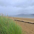 Rolling Mists.................................Ireland by Fara