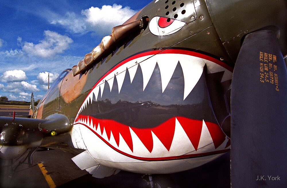 P-40 by J.K. York