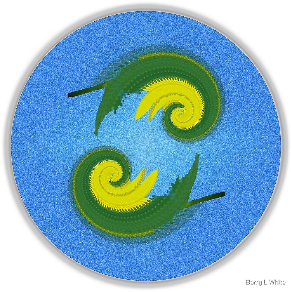 Dual Symmetry by Barry L White