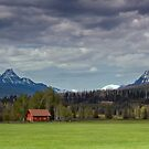 Home Ranch by Fred Frank