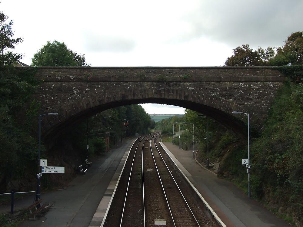 train tracks3 by matjenkins