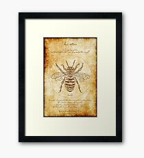 Vitruvian Bee Poster for Gardeners and BeeKeepers Framed Print