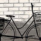 The bike . . . by Rosalie Dale