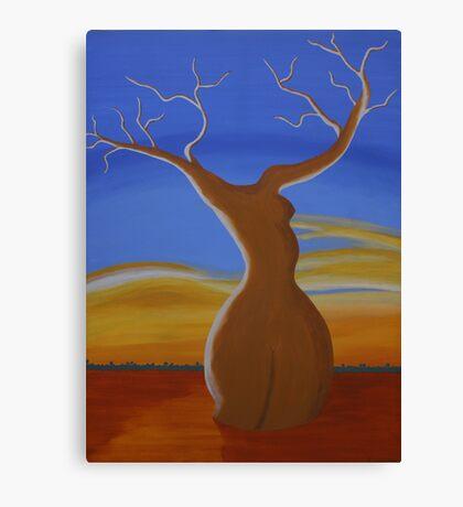 LADY BOABAB (OUTBACK AUSTRALIA) Canvas Print