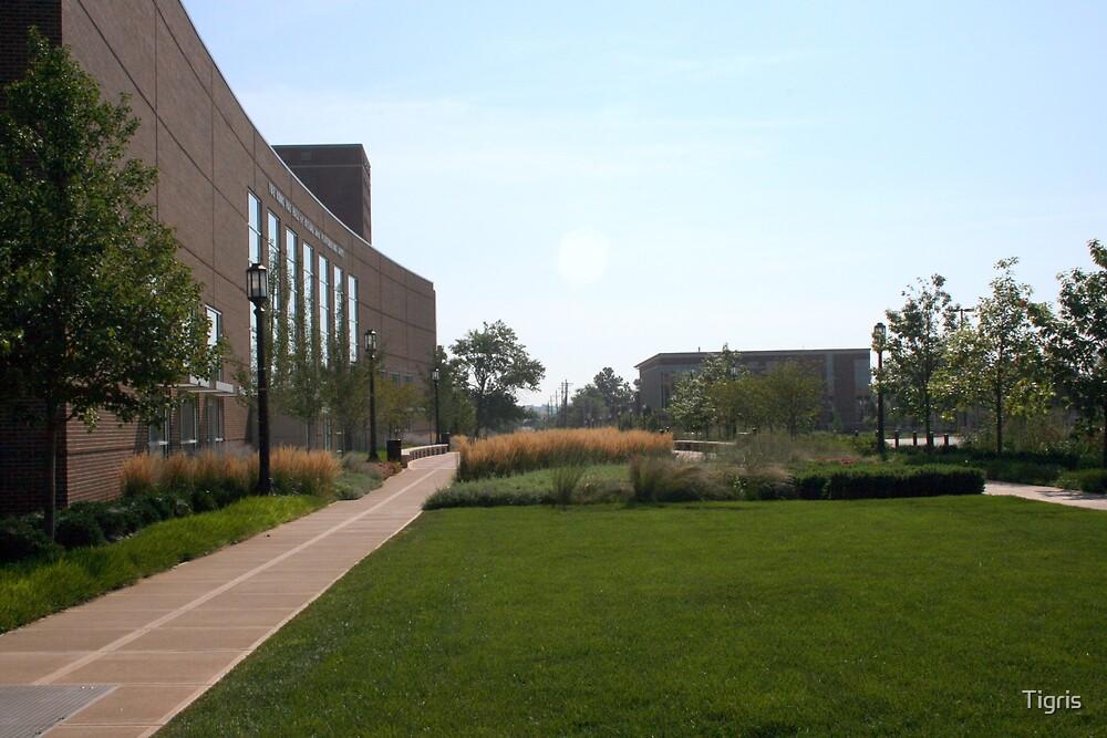 Purdue campus by Tigris