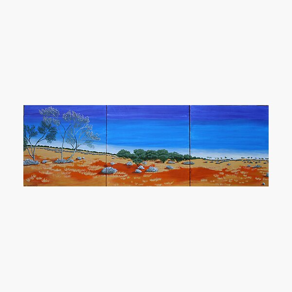 OUTBACK VISTA TRIPTYCH (AUSTRALIA) Photographic Print