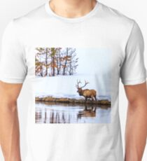 A Winter Wade Unisex T-Shirt