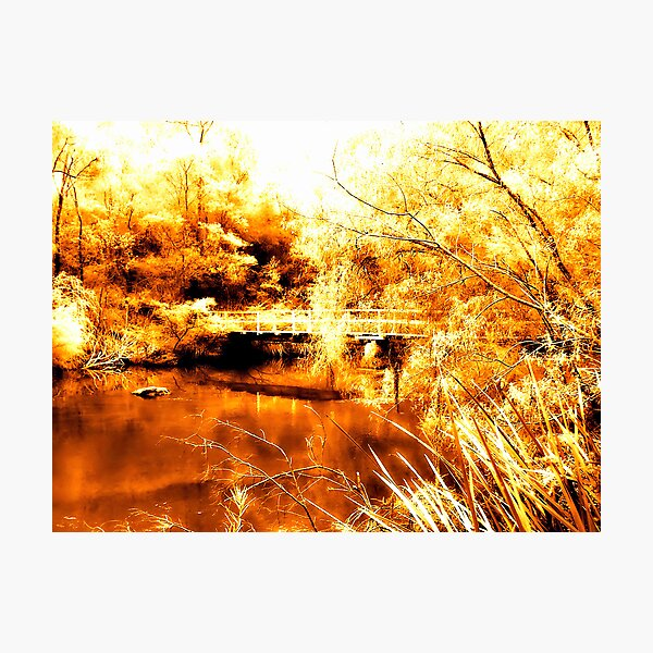 The Same Deep Water As You Photographic Print