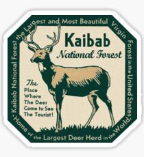 Kaibab National Forest Arizona Vintage Travel Decal Sticker