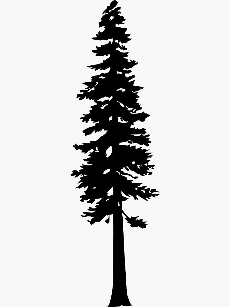 Redwood Tree Silhouette by katedill0n