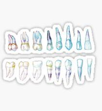 Teeth Blue Sticker