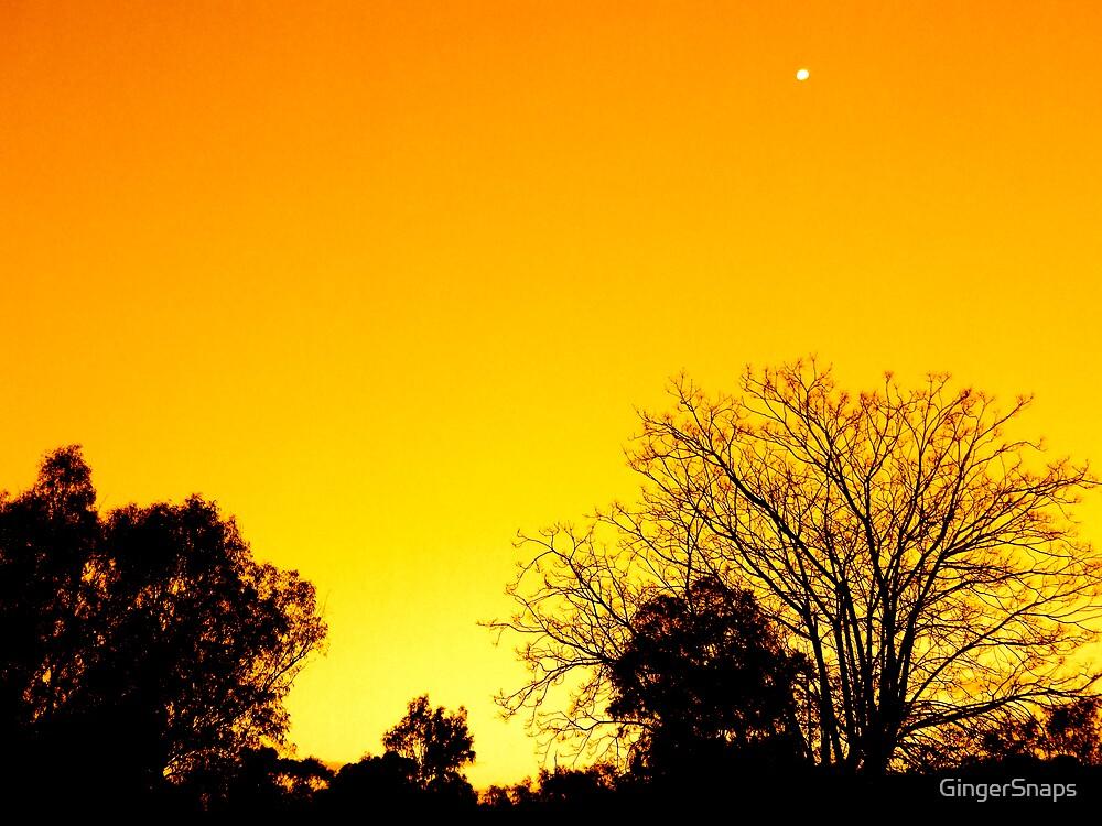 Blazing sun by GingerSnaps