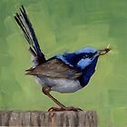 Fairy Wren With Lunch by Margaret Stockdale