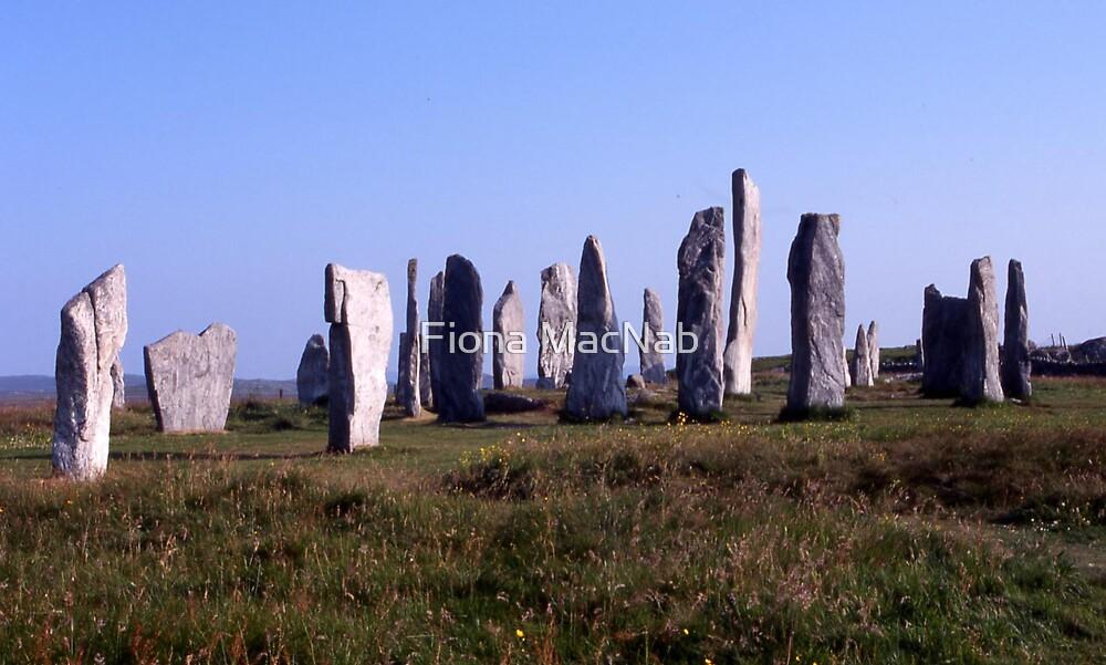 Stone circle by Fiona MacNab