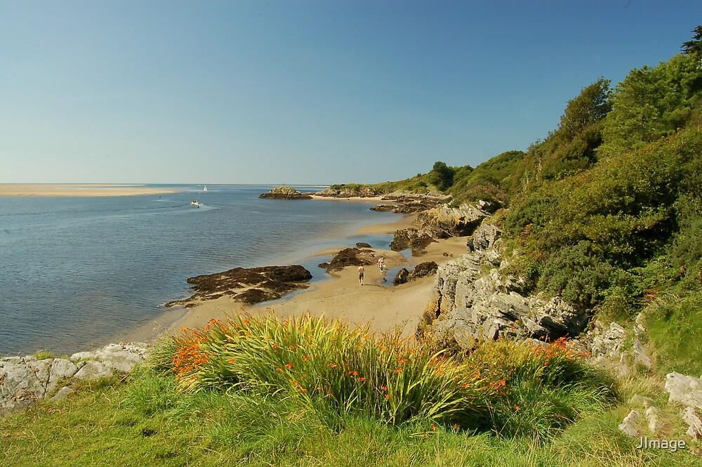 Coast at Borth-y-Gest by JImage