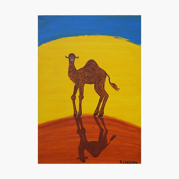 FUNKY CAMEL (OUTBACK AUSTRALIA) Photographic Print