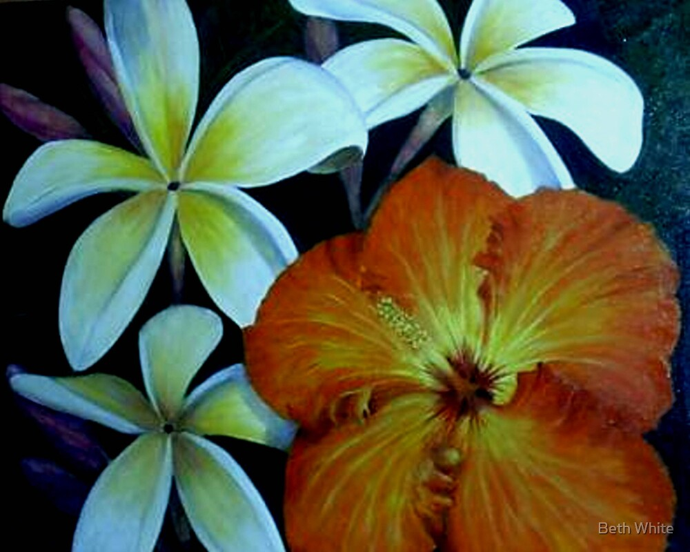 """""""Tropical Companions"""" by Beth White"""