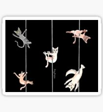 Pole Kittens at Play Sticker