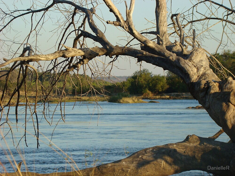 Zambezi River by DanielleR