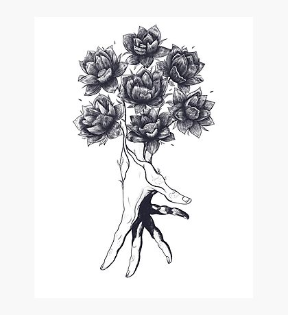 Hand with lotuses on black Photographic Print