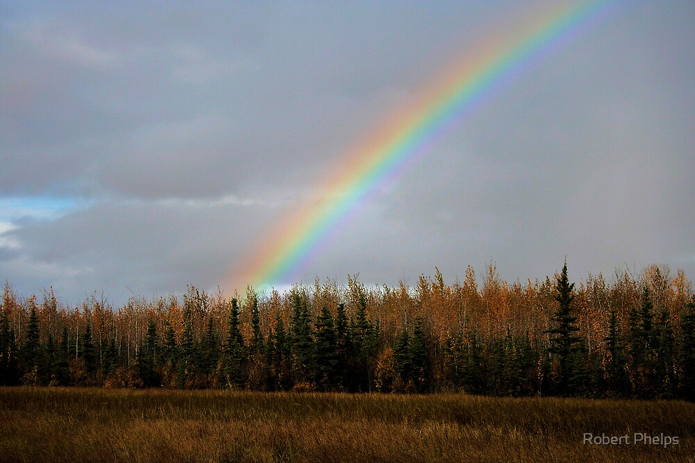 Autumn Rainbow by Robert Phelps