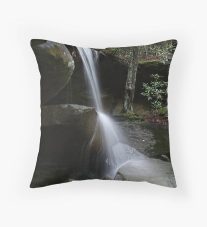 Jenny's Creek Falls Throw Pillow