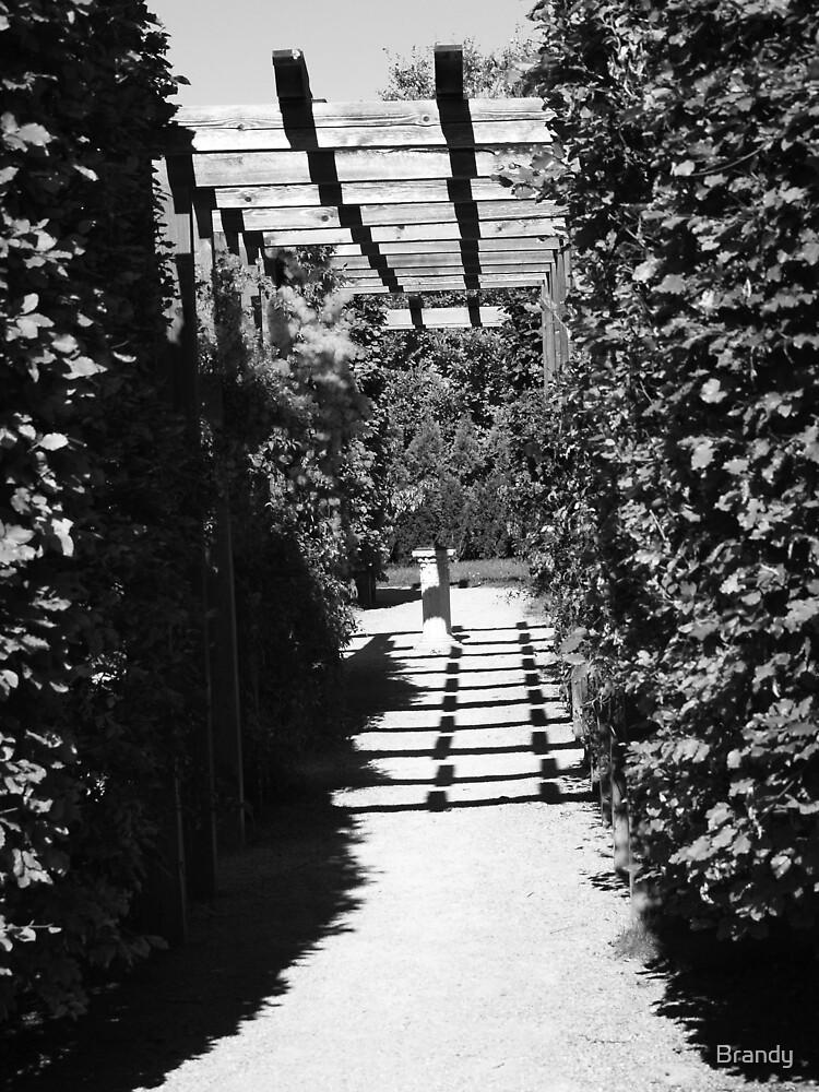 Secret Garden by Brandy