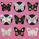 Butterflies by Sarah Jarrett