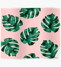 Tropical fern leaves on peach Poster