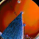 REDSKY by SLONG