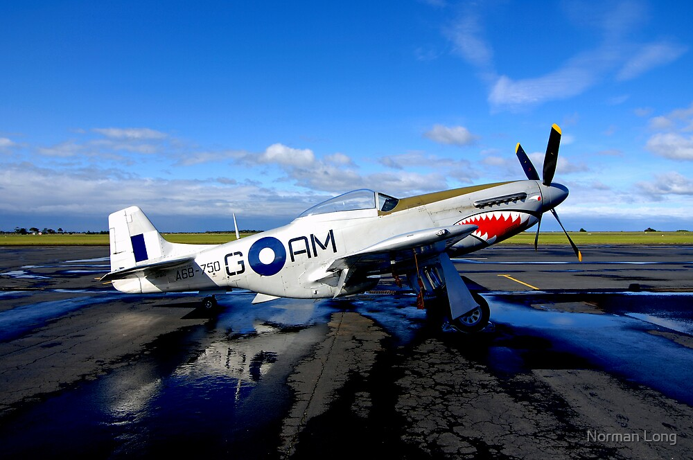 P51 Mustang by Norman Long