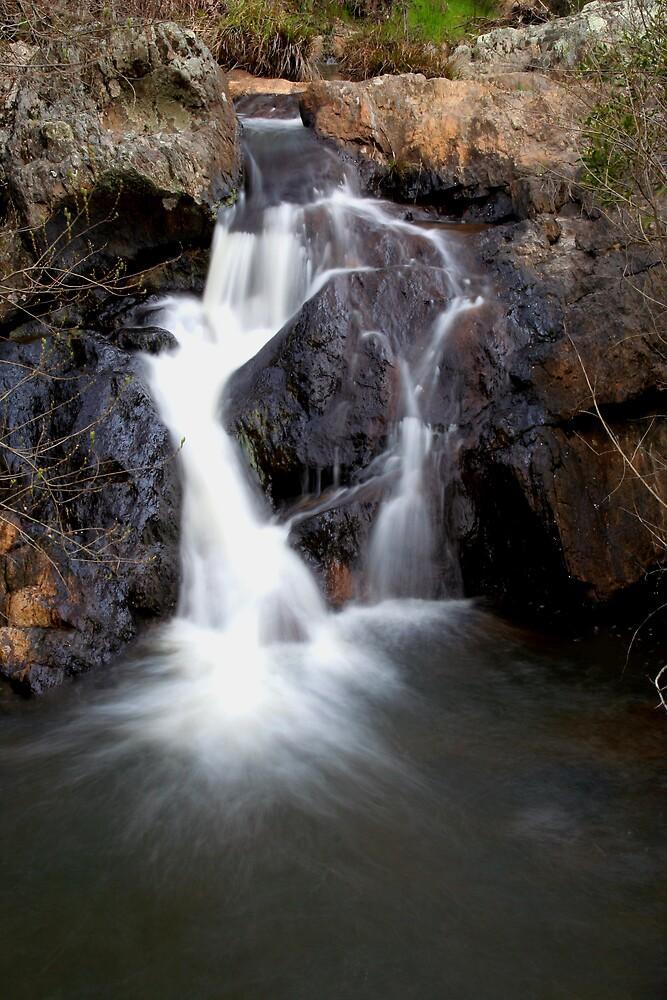 Hurdle Creek by Lindsay Knowles