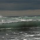Sea sculpture by Danielle Kennedy Boyd