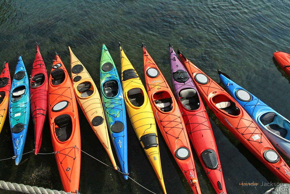 Kayaks! by Linda  Jackson